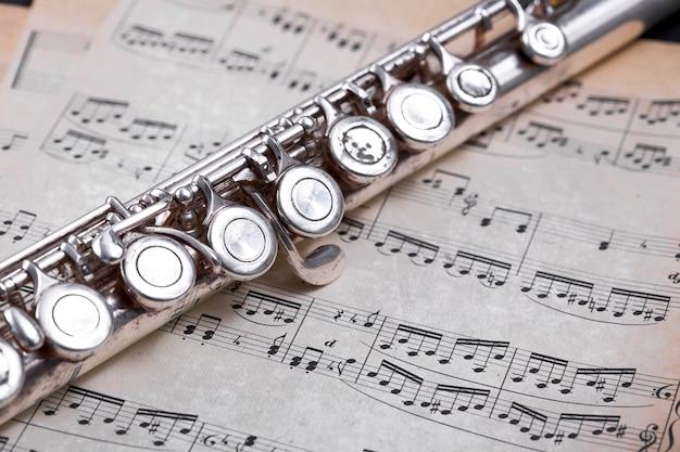 Chiuda in su del flauto del metallo