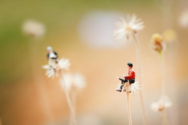 Primo piano di miniatura, due uomini che parlano insieme sul fiore come il dente di leone.