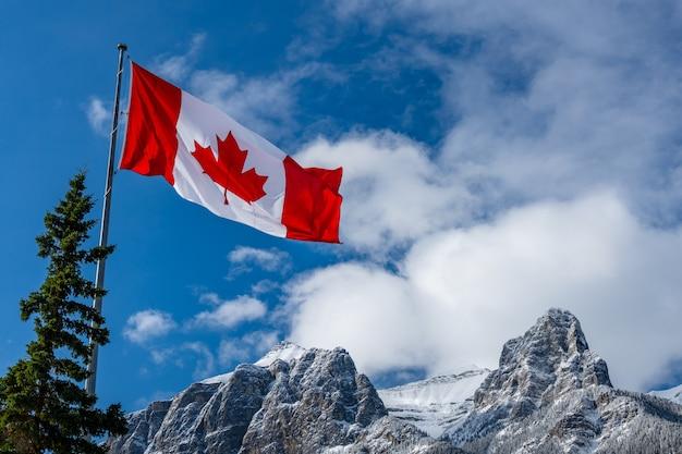Chiuda in su della bandiera nazionale del canada con montagne naturali e paesaggi di alberi in background.