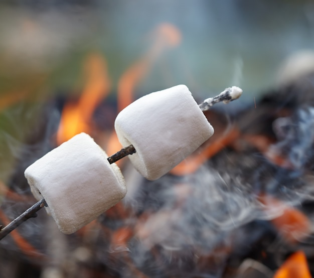 Primo piano o marshmallow accanto al fuoco su un bastone