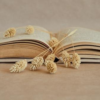 Primo piano di un libro aperto e spighe secche su una pagina di carta