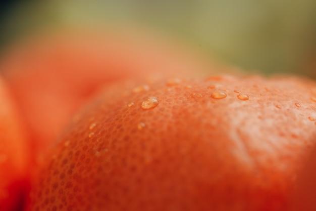 Close up orange con piccole gocce d'acqua sulla buccia