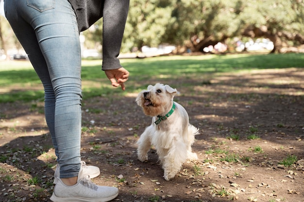 Primo piano proprietario e cane all'aperto