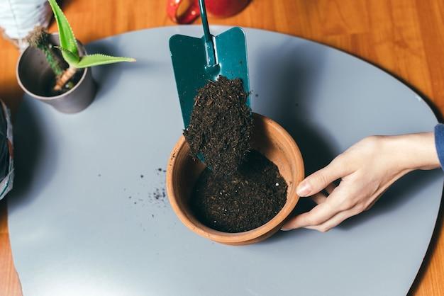 Chiuda sulla foto della donna che mette il terreno in vaso per piantare alcuni fiori