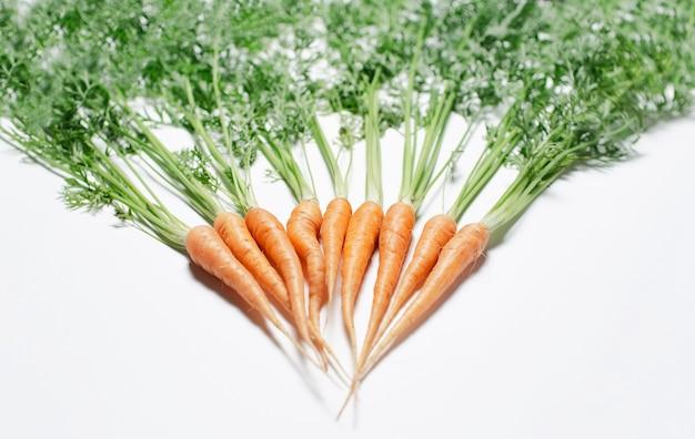 Immagine del primo piano di piccole carote di freschezza su bianco.