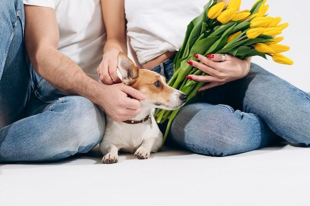 Chiuda sul ritratto del cane con i fiori gialli isolati su fondo bianco con le coppie adorabili dietro. festeggiamo san valentino, festa della donna. amore e concetto familiare felice. Foto Premium