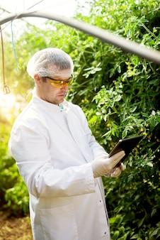 Chiuda su dell'agricoltore sorridente moderno protetto con i guanti e gli occhiali che stanno nella serra mentre tengono una compressa.