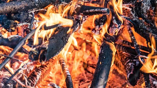 Close up red carboni ardenti e la fiamma nel falò, siberia.