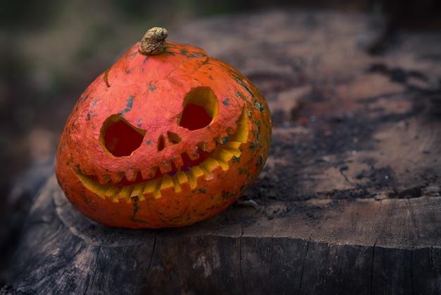 Primo piano di una zucca rossa spaventosa e arrabbiata con grandi occhi e denti che guardano e sorridono alla telecamera