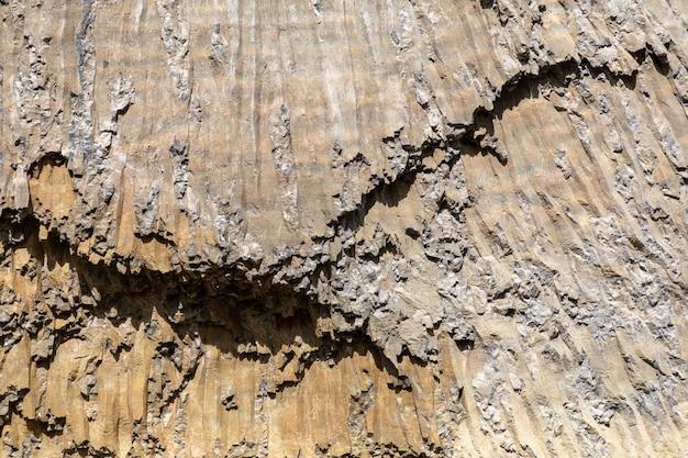 In prossimità di una struttura rocciosa, il parco nazionale di yellowstone