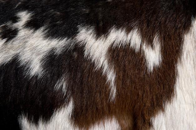 Primo piano del fondo della pelliccia della capra di rove