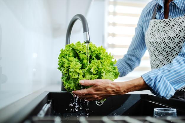 Chiuda su della donna senior in grembiule che sta nella cucina e che lava l'insalata verde nel lavandino di cucina