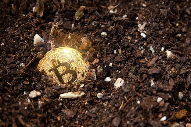 Immagine ravvicinata di un bitcoin portato alla luce