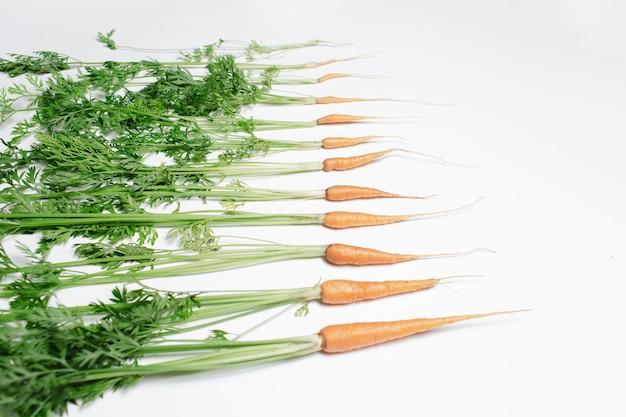 Close-up di piccole carote su sfondo bianco.