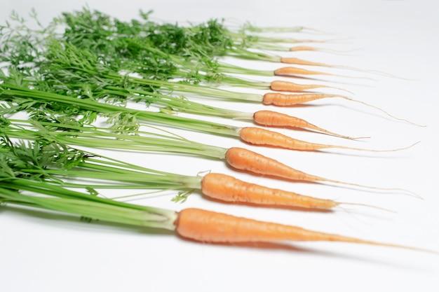 Close-up di piccole carote fresche su sfondo bianco.