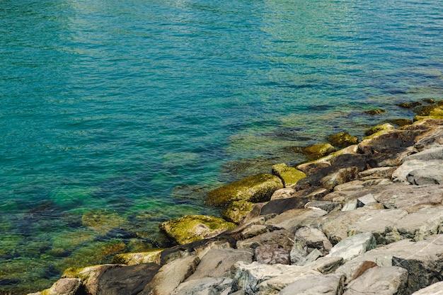 Primo piano di pietre e acqua limpida sulla riva di una spiaggia