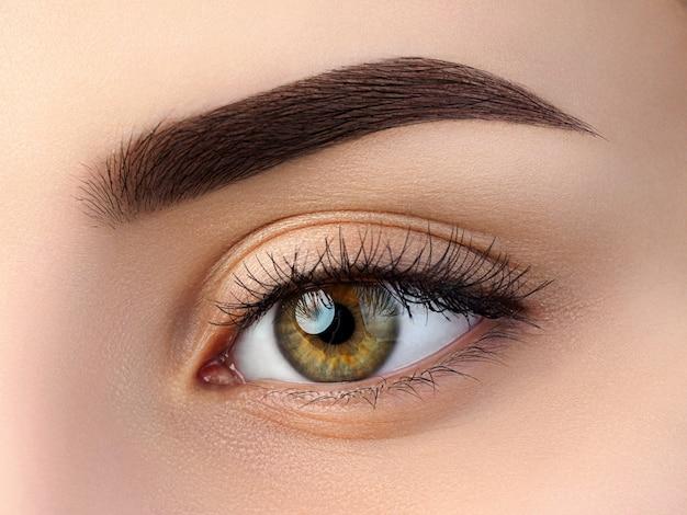 Vista ravvicinata del bellissimo occhio femmina marrone. sopracciglia alla moda perfette. buona visione, lenti a contatto, barra per sopracciglia o concetto di trucco per sopracciglia di moda