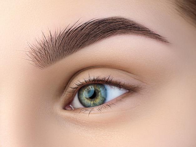 Vista ravvicinata del bellissimo occhio femminile verde. sopracciglia alla moda perfette. buona visione, lenti a contatto, barra per sopracciglia o concetto di trucco per sopracciglia di moda