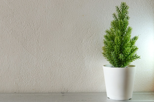 Vista ravvicinata della pianta verde in vaso con sfondo a parete