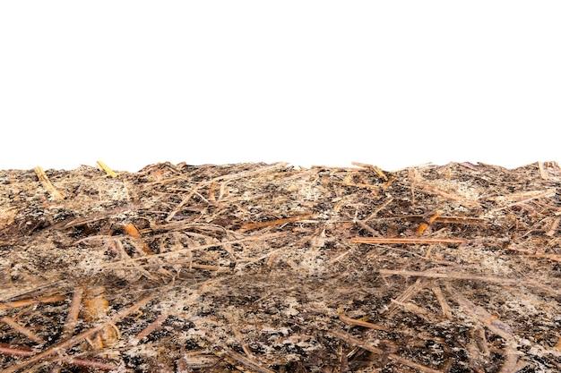 Vista ravvicinata della trama del terreno con sfondo bianco