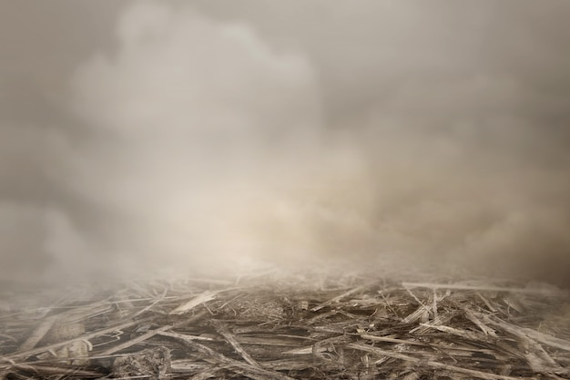 Vista ravvicinata del terreno con sfondo nebbioso