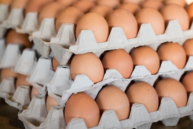 Chiudere le uova intere nella scatola. uova di gallina molte. focalizzazione morbida