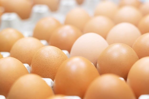 Chiudere le uova intere nella casella. uovo di gallina molti. focalizzazione morbida