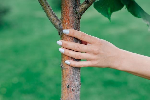 Primo piano della mano della donna che tocca il giovane tronco d'albero, concetto di connessione con la natura e riconnessione con la terra.