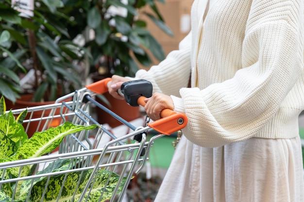 Chiuda in su della donna in maglione bianco con carrello della spesa scegliendo e acquistando piante per la sua casa in serra o giardino