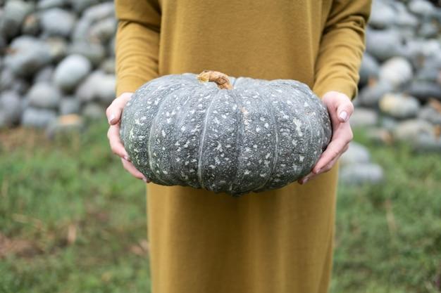 Primo piano delle mani delle donne che tengono la zucca grigia in natura. concetto di halloween o del ringraziamento.