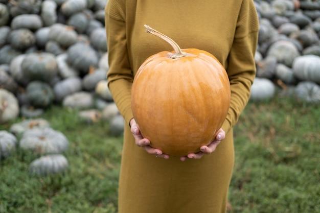 Primo piano delle mani delle donne che tengono la zucca arancione in natura. concetto di halloween o del ringraziamento.