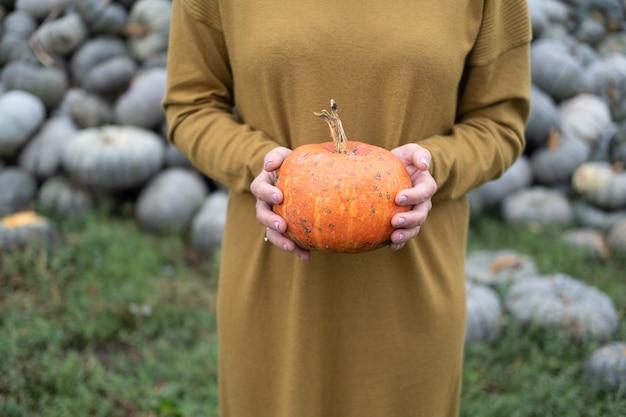 Primo piano delle mani delle donne che tengono la zucca arancione in natura halloween o concetto di ringraziamento