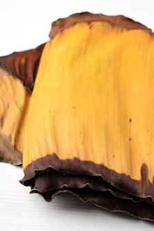 Close up giallo marcio foglia di banana su sfondo bianco, isolated
