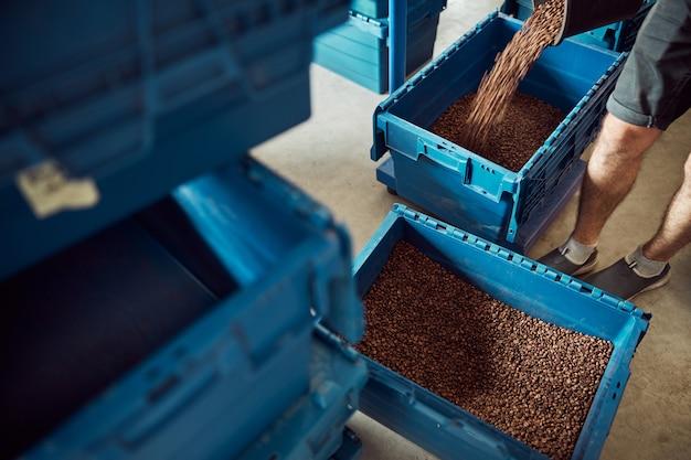 Primo piano di un giovane che riempie la scatola di immagazzinaggio blu con fagioli arrostiti