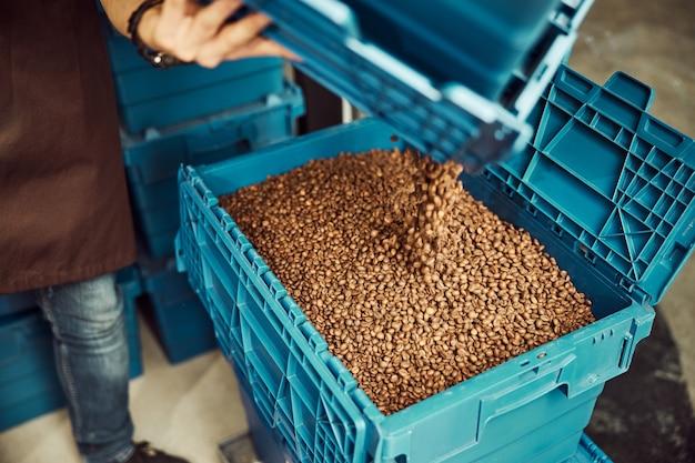 Primo piano di un giovane che riempie un contenitore di plastica con fagioli arrostiti marroni