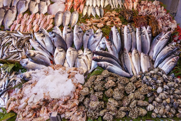 Primo piano di frutti di mare e pesce assortiti al mercato ittico di istanbul turchia fuoco selettivo