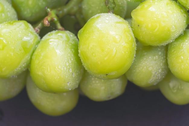 Primo piano uva coreana sfocata con buccia verde, molte gocce d'acqua intorno, messe sullo sfondo, luce sfocata intorno
