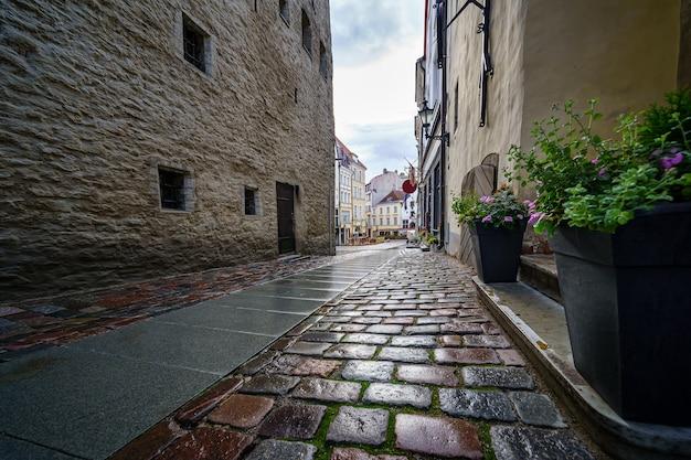 Primo piano della strada acciottolata con vecchi edifici dopo la pioggia.
