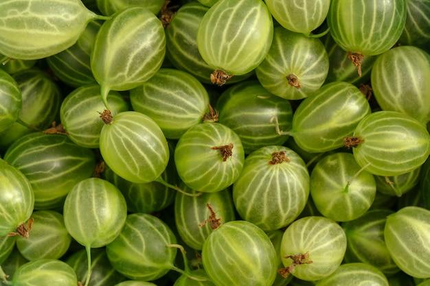 Primo piano su uva spina verde sfondo texture