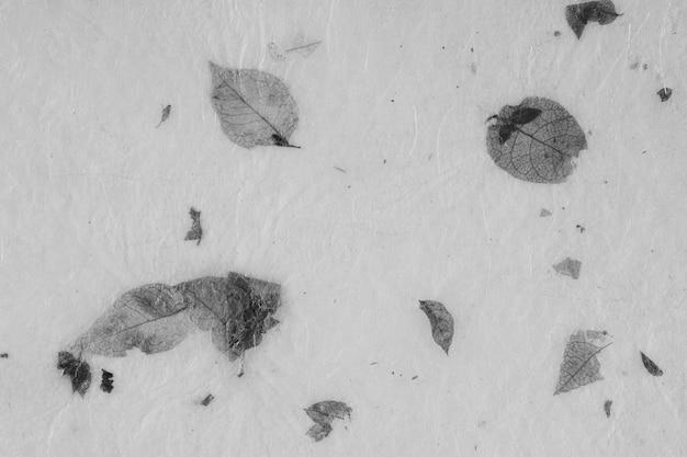 Primo piano della priorità bassa dell'annata di struttura di carta fatta a mano con il foglio. bianco e nero.
