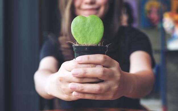 Immagine del primo piano di una donna asiatica che tiene e che dà un cactus di forma del cuore in vaso dell'albero