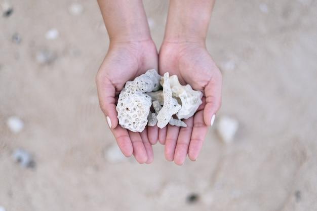Immagine del primo piano delle mani che tengono e che mostrano i coralli sulla spiaggia