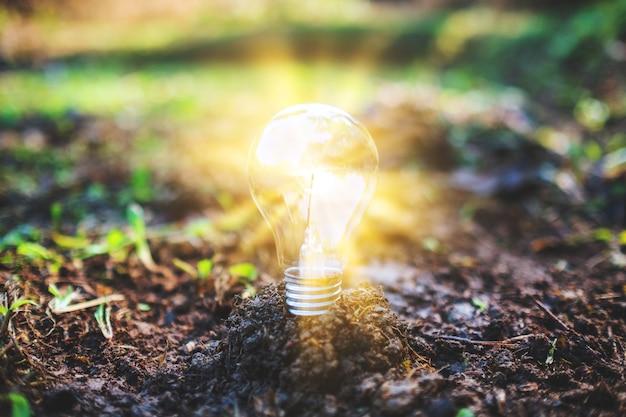 Immagine del primo piano di una lampadina che emette luce su un mucchio di terra
