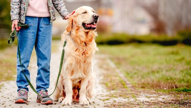 Ritratto del primo piano del cane da riporto dorato che si siede e che guarda indietro sulla natura durante la passeggiata con la bambina