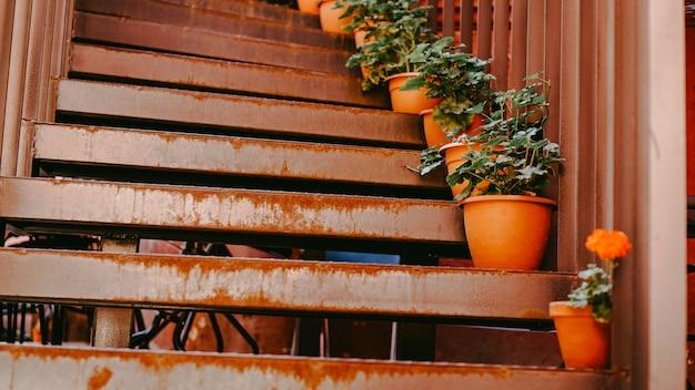 Primo piano della ringhiera e gradini con fiori nel vecchio cortile rosso. minsk bielorussia