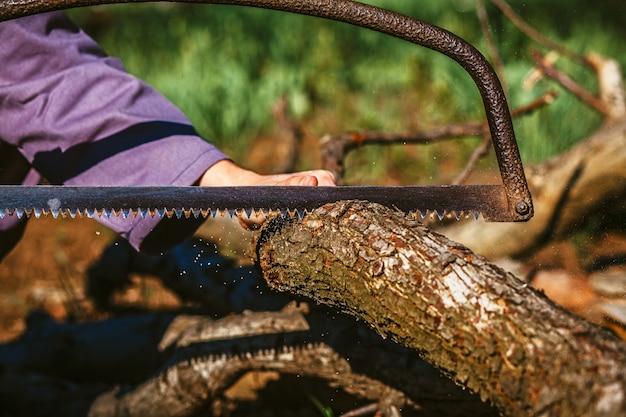 Primo piano ha visto e boscaiolo mano taglio alberi all'aperto