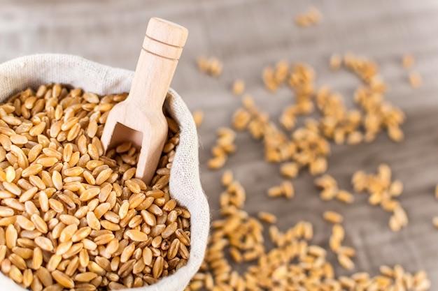 Colpo del primo piano del chicco di grano crudo e di un cucchiaio di legno in un sacco di tela da imballaggio