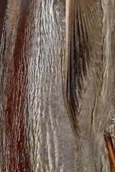 Primo piano di pelle di pesce essiccato senza squame con pinna pettorale