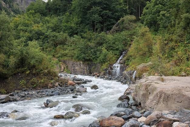 Primo piano scene di fiume nella foresta, parco nazionale dombai, caucaso, russia, europa. paesaggio estivo, tempo soleggiato, cielo azzurro drammatico e giornata di sole