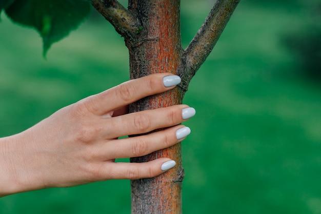 Primo piano della mano di woma che tocca il concetto di tronco d'albero giovane di protezione ambientale e ripristino o...
